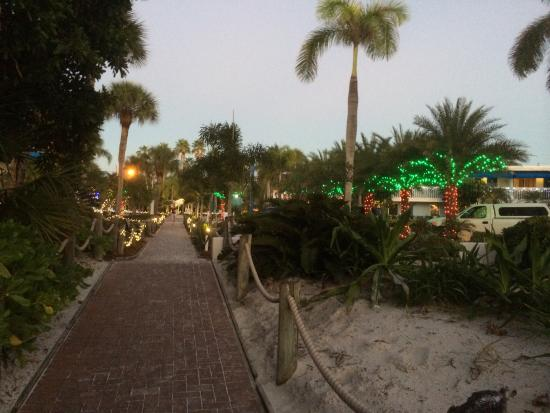Walkway To The Beach At Christmas Time
