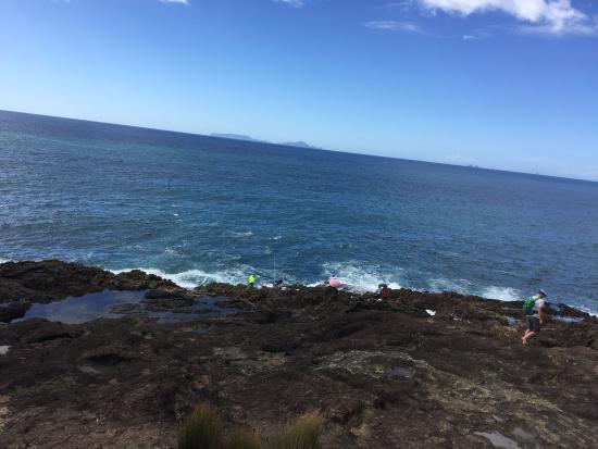 Ruakaka Beach: photo3.jpg