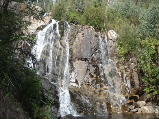 Marysville, Australië: The soothing mixture of sounds the of running water & nature.
