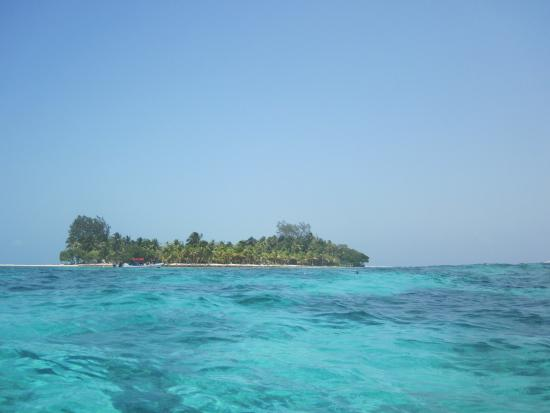IZE Belize: Snorkeling at Pelican Beach looking back at the Caye