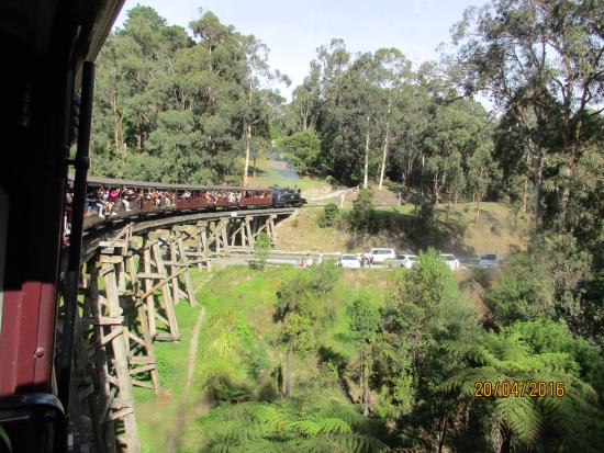 Travelling over the historic trestle bridge from Belgrave towards Clematis