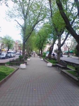Platanovaya Alley