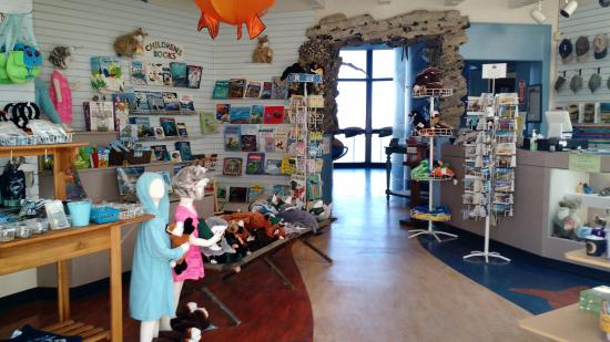 Gift shop & ticket counter - Picture of Museum of Natural History ...