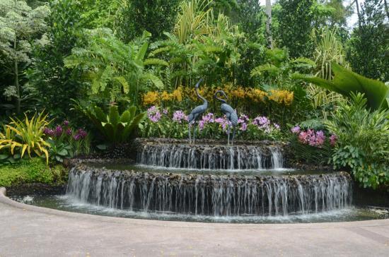 Singapore Botanic Gardens Waterfall