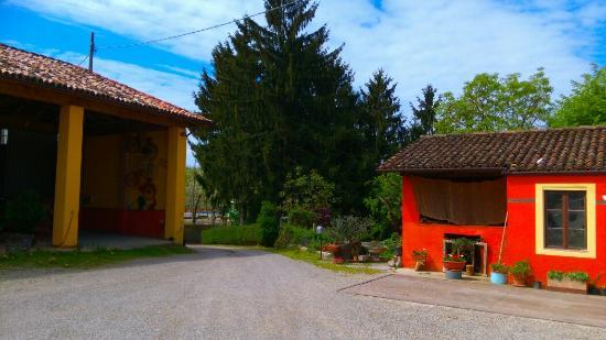 Castelnuovo Calcea, Italia: IMAG4528_large.jpg