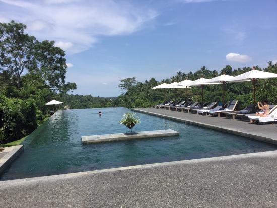 Pool - Alila Ubud Photo