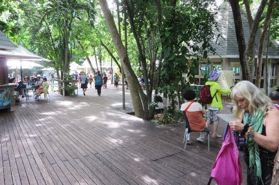 Green Island Resort: photo5.jpg