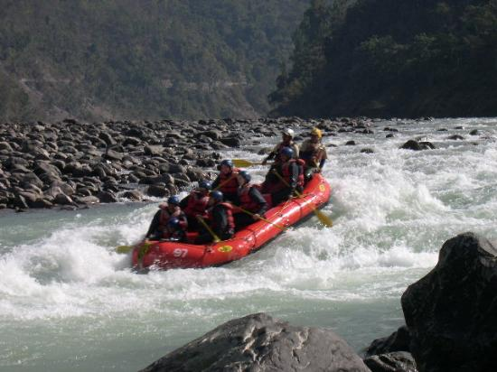 Camp Panther Rishikesh: Activities - Rafting on the Ganges