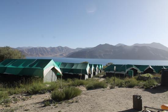 Pangong Delight Camp Photo