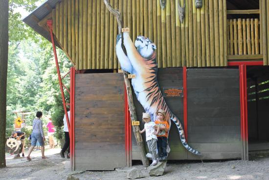 Zlin, República Checa: tigeeer