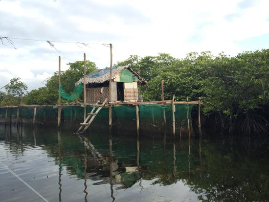 Day-Asan Floating Villages: photo1.jpg