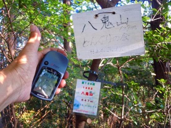 Owase, Япония: ようやく八鬼山