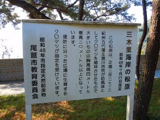 Owase, Japón: 三木里海岸