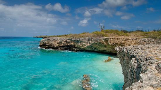 Carribean Club Bar and Restaurant: Wunderschöne Tauchplätze