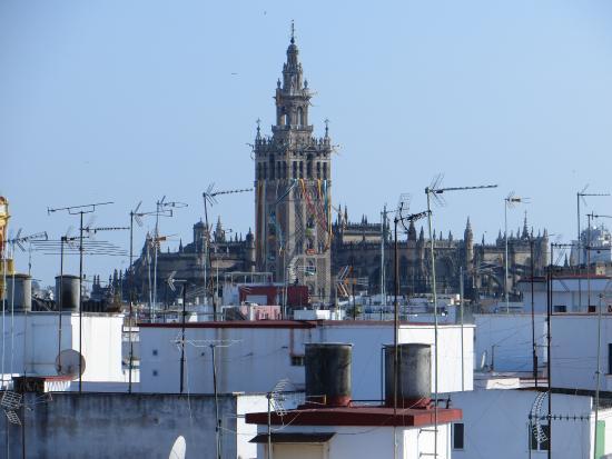 Hotel Don Paco: Uitzicht vanaf het dakterras