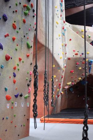 ‪inSPIRE Rock Indoor Climbing & Team Building Center‬
