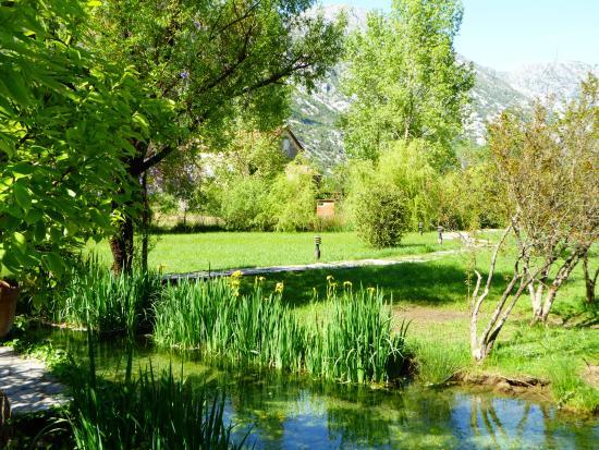 Morinj, Μαυροβούνιο: Un jardin de rêve