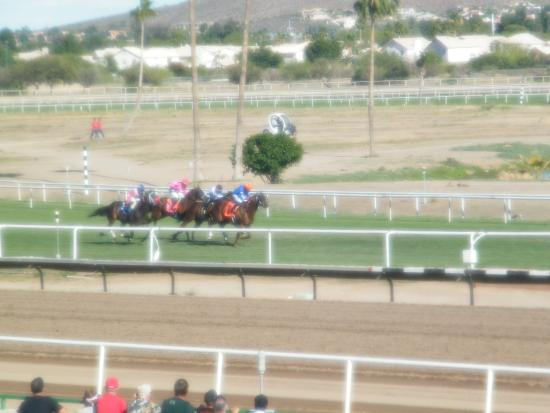 VIP Offers and Events At Turf Paradise Racecourse