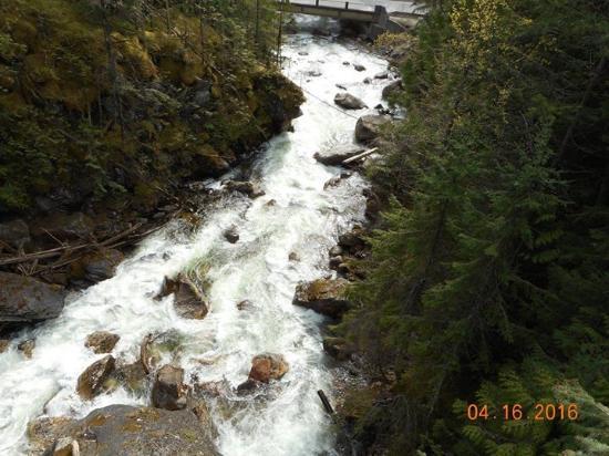 Sicamous, Canada: Crazy creek