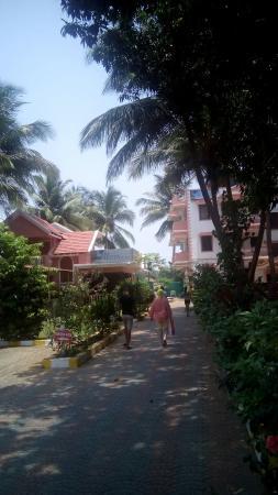 Siesta de Goa Hotel: АПРЕЛЬ 2016г