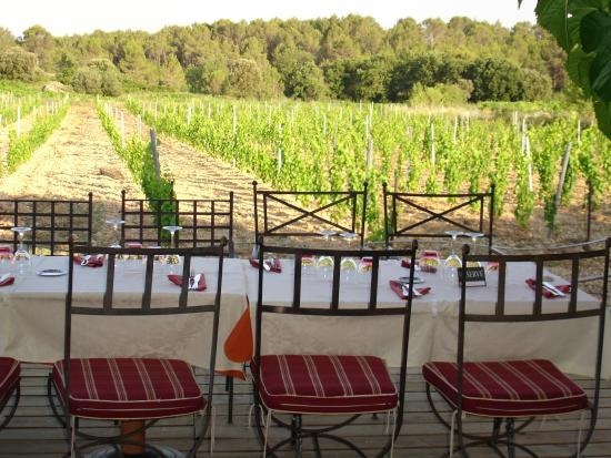Le Clos des vignes : terrasse devant les vignes