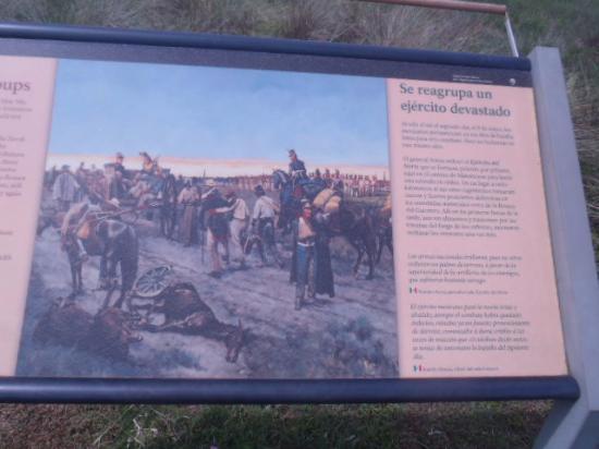 Palo Alto Battlefield National Historic Site: History