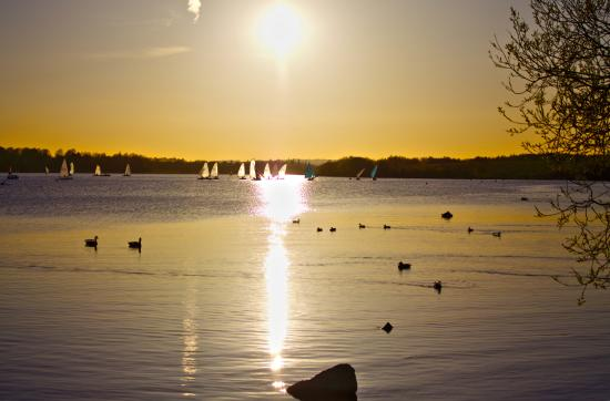 Pennington Flash Country Park: Early evening sunset lighting up the yachts in the distance. Very relaxing.