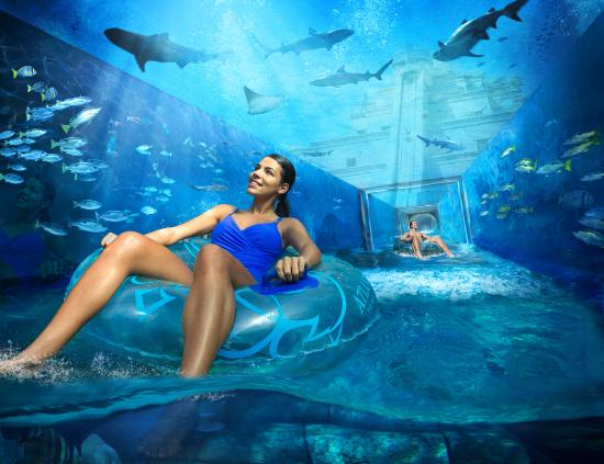 Atlantis, The Palm: Aquaventure Waterpark - Shark Attack