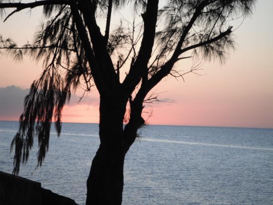 Sunset Tarpum Bay