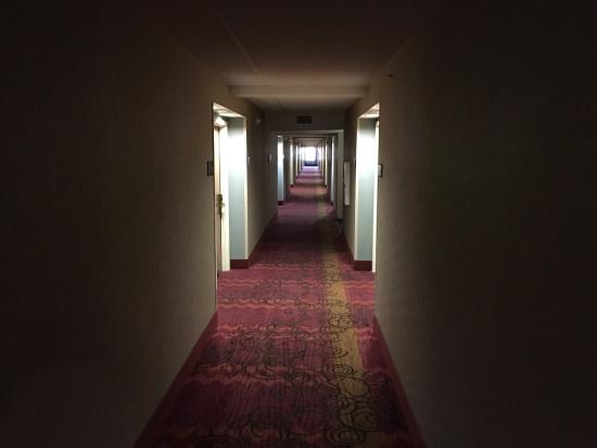 Hampton Inn St. Joseph I-94: photo4.jpg