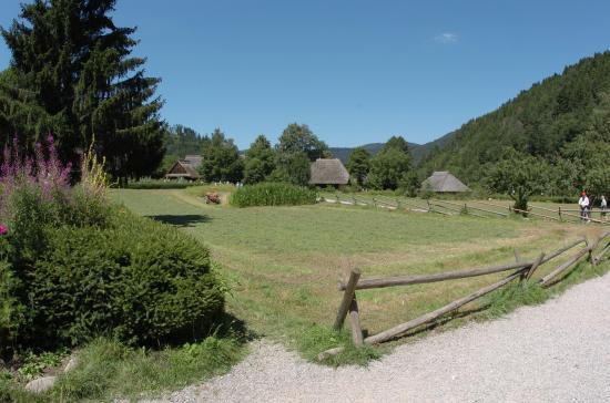 Gutach im Schwarzwald, Alemania: Vista d'insieme