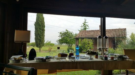Alla Cedrara Azienda Agrituristica: photo1.jpg