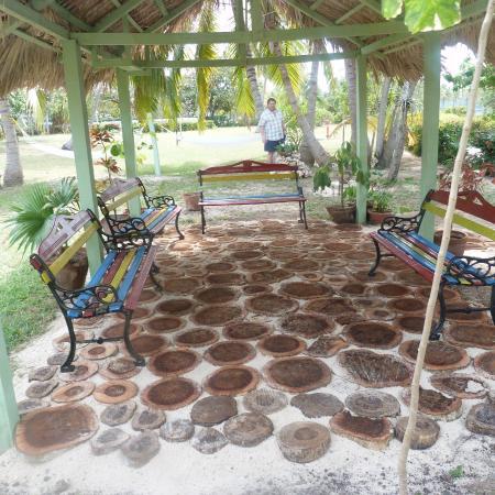 quiet reading area - with hammocks