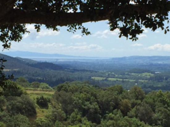 Kenwood, Kalifornien: View from the top of the ridge - valley floor out to the Bay