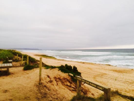 Portsea, Australia: Wild wooly Gunnamatta beach!