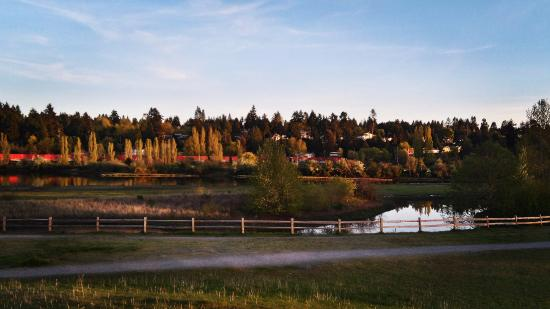 Surrey, Kanada: The walking paths at Blackie Spit Park