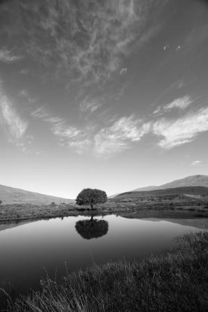 Queenstown Center for Creative Photography Day Workshops: photo0.jpg