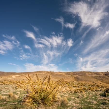 Queenstown Center for Creative Photography Day Workshops: photo1.jpg