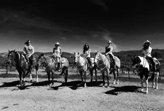 Wine Country Trails by Horseback: Our gang