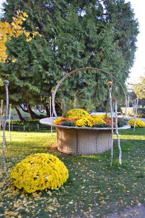 Jardin botanique photo de jardin botanique de tours for Jardin botanique tours
