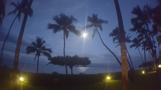 Puunoa Beach Estates: 20160423_053551_large.jpg