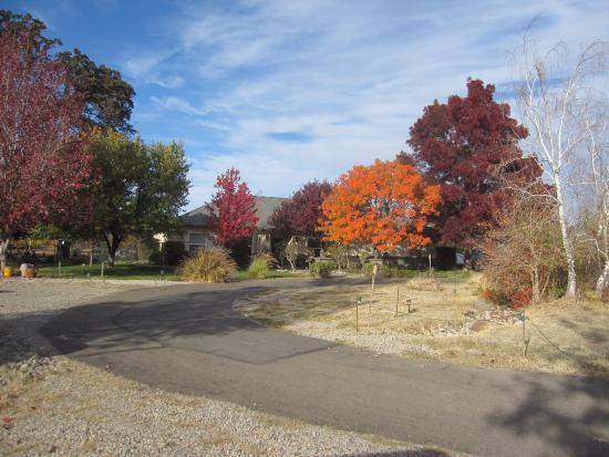 Tuscan Ridge Estate  Winery: October at Tuscan Ridge Winery