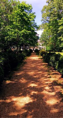 Waverley Mansion: photo1.jpg