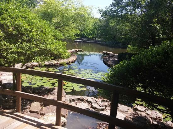 Weatherford, تكساس: 20160425_140056_large.jpg