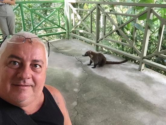 Gamboa Rainforest Resort Chunga Chagres Tour: photo4.jpg