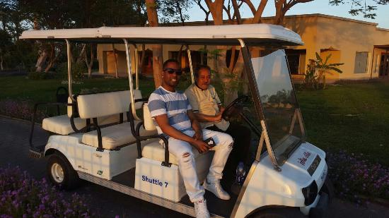King Tut Golf Cart Html on