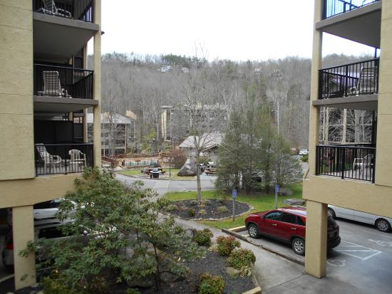 Tree Tops Resort: View from Building 4
