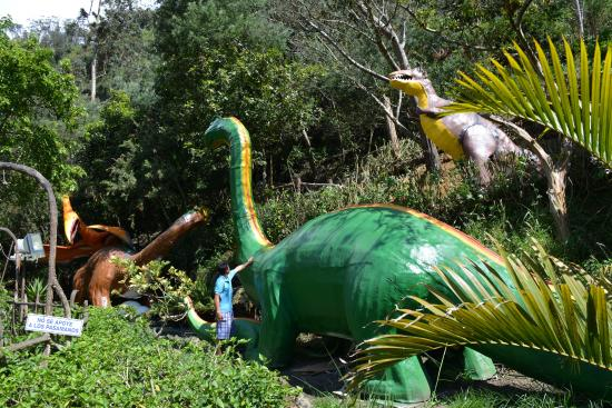 Eduardo's Ecologia & Aventura