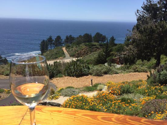 Treebones Resort Wild Coast Restaurant and Sushi Bar Photo