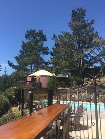 Treebones Resort Wild Coast Restaurant and Sushi Bar Foto